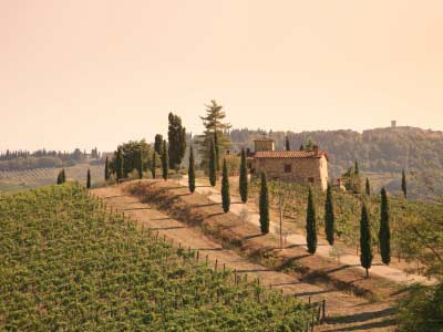 tuscany-wine-region-1