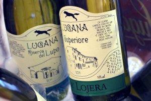 ca-lojera-wines